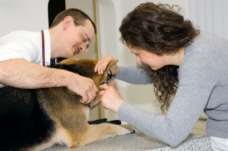 Dr. Pagl Behandlung.jpg